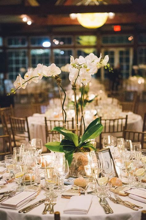 Best White Orchid Centerpiece Ideas Pinterest