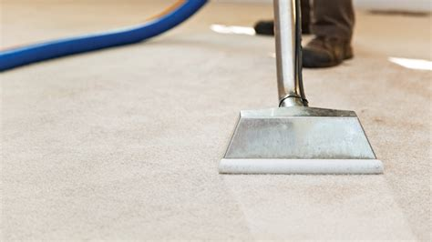 professional rug cleaning 4 things you should never use to clean carpet angie s list