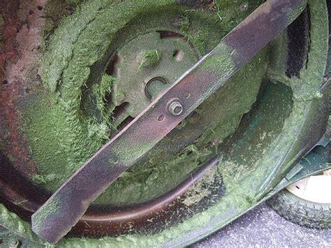 Choosing A Gas Driven Lawn Mower  Nancy's Garden Blog