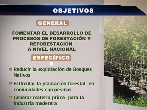 1 Forestación Y Reforestación Diseñada
