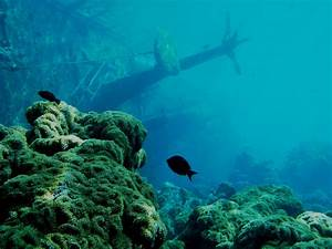 Underwater Wallpaper Hd Shipwreck