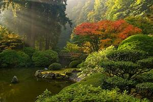 Japanese Garden Wallpaper Backgrounds
