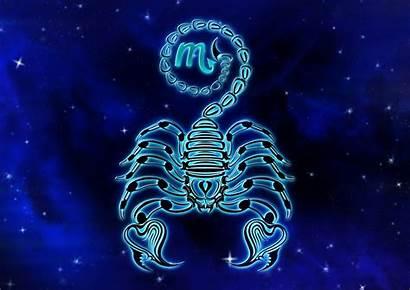 Scorpio Scorpion Zodiac Wallpapers Sign Background Astrology