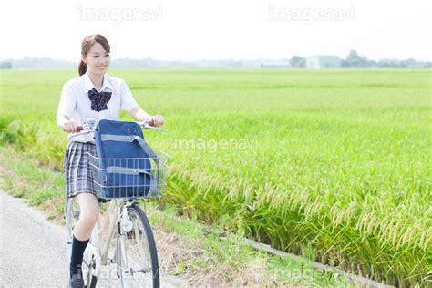 自転車 防犯 登録 解除