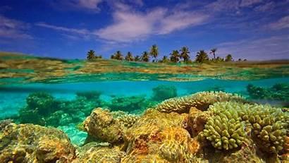 Bing Wallpapers Island Maldives Cave Reef