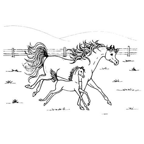 Kleurplaten paard hier vind je maar liefst 30 paarden kleurplaten. Paarden kleurplaten :: Kleurplatenpagina.nl ~ boordevol ...