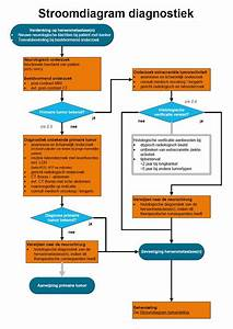 Oncoline  Hersenmetastasen   Stroomdiagram