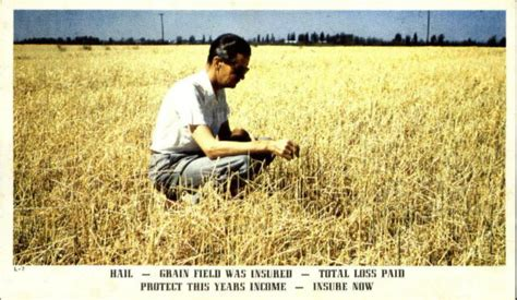 Over the decades, its stability has enabled its team of… 2. Grain Field total loss ~ The Rain and Hail Insurance ...