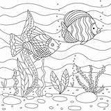 Algae Coloring Fish Sea Floor Children Square Ocean sketch template