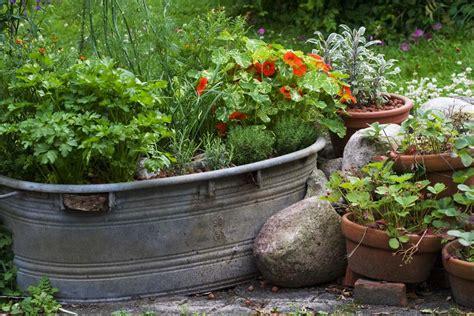 Kräuter Im Garten Auch Zum Sammeln Gartentechnikde