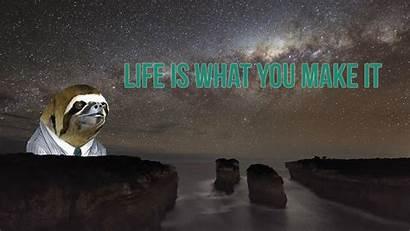 Sloth Funny Sloths Wallpapers Meme Random Astronaut