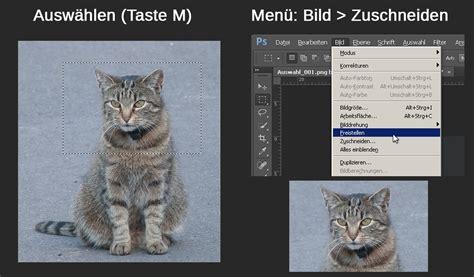 photoshop bild zuschneiden die besten  methoden