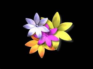 Animated Pictures Of Flowers Free Download