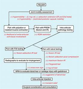 Hip Pain Differential Diagnosis Flow Chart Used In