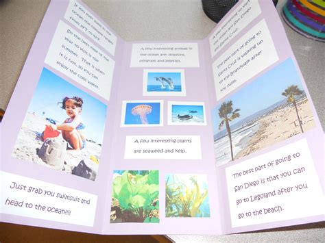 Brochure Templates For School Project by Biome Travel Brochure Geography One World One