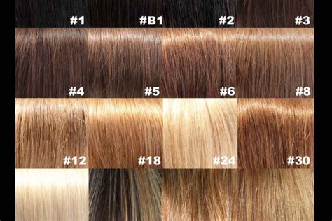 Red Hair Color Brown Colors Chart Dark