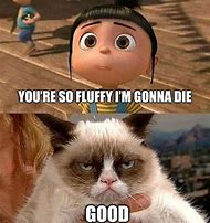 So Fluffy Grumpy Cat Meme
