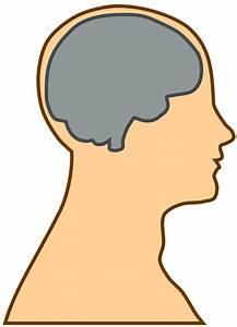 Clipart - Silhouette of a brain