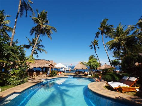 pura vida dive resort dauin dauin dumaguete philippines great discounted rates