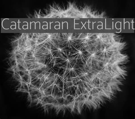 Catamaran Font by Catamaran Extralight Font Comments Free Fonts Download