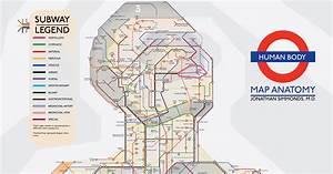 An Illustrated Subway Map Of Human Anatomy