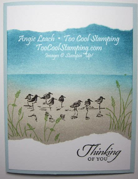 wetlands sandpipers ocean scene  cool stamping
