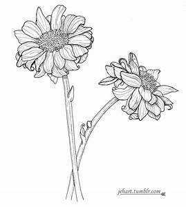 Drawing Tumblr Flowers | www.pixshark.com - Images ...