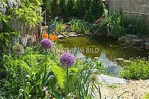 Wasserpflanzen Teich Kaufen : bild gartenteich ~ Michelbontemps.com Haus und Dekorationen