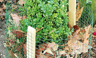 Hortensien Im Garten Winterfest Machen by Garten Winterfest Machen Selbst De