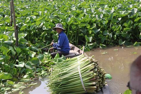 detomos  blog archive vietnam  mekong river