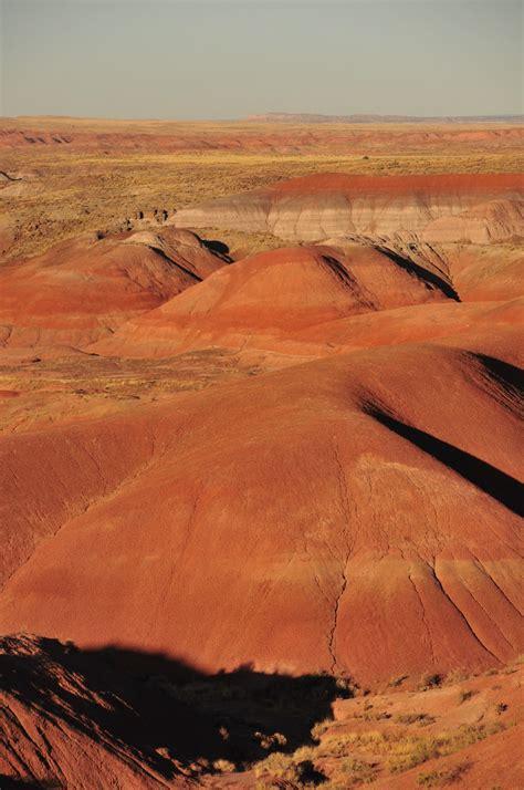 lens travel blog painted desert  petrified