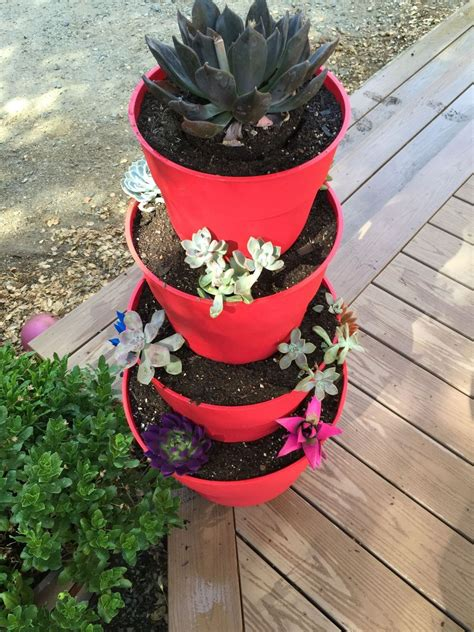 hometalk     tiered succulent planter