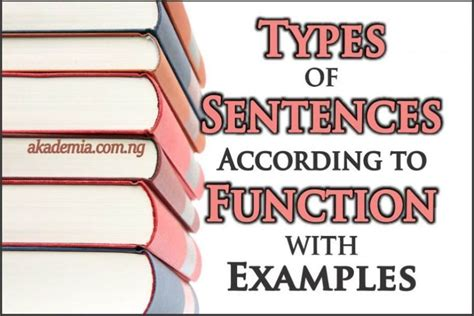 types of sentences according to function with exles