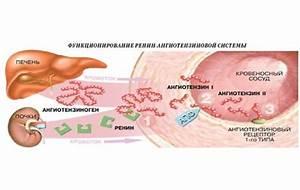 Артериальная гипертензия клиника лечение профилактика