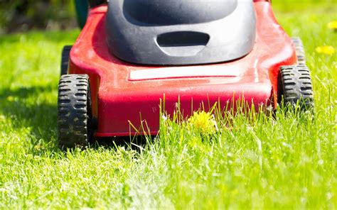 Ahhh..the Smell Of Freshly-cut Grass