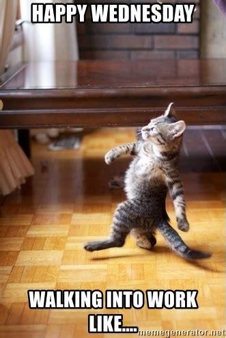 Happy Wednesday Meme - happy wednesday walking into work like walking cat meme generator