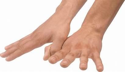 Hands Hand Pngimg Kb