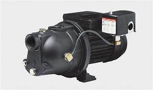 Red Lion Well Pump 3  4 Hp Shallow Well 120v Wiring Diagram