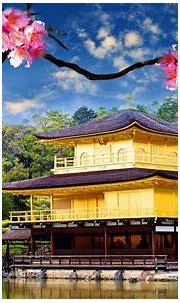 Golden Pavilion Kinkaku Ji Wide : Wallpapers13.com