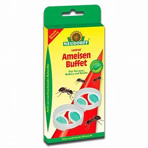 Mittel Gegen Ameisen : neudorff loxiran ameisenbuffet ameisenk der was tun gegen ameisen ameisenbuffet ameisengift ~ Buech-reservation.com Haus und Dekorationen