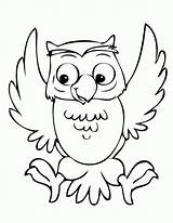 Coloring Pages Owl Preschool Popular Boys sketch template