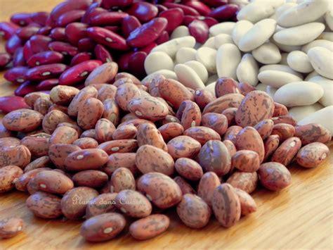 comment cuisiner les haricots coco cuisson rapide des haricots secs envie de cuisiner
