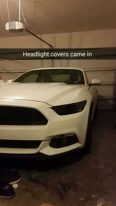 post   pictures  mustang forums  stangnet