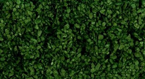 Gaugemaster Gm158 Dark Green Scenic Leaves Ooho At