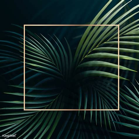 Download premium vector of Square golden frame on a ...