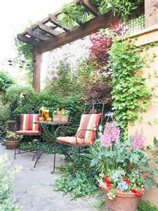 Pergola Privacy Screen Plant