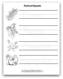 worksheets  kids preschool kindergarten early