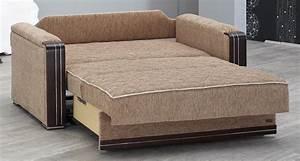 Sleeper sofa denver 20 top denver sleeper sofas sofa ideas for Denver sofa bed