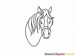 Pferdekopf Schwarz Weiß : pferdekopf zeichnung ~ Watch28wear.com Haus und Dekorationen