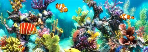 sim aquarium  el placer de tener  acuario en el